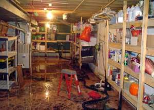 waterproofing specialties inc basement wet basement ridgway